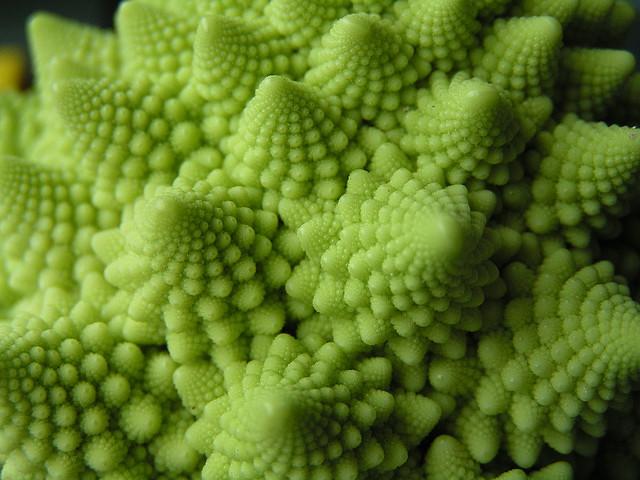 Fractal cauliflower by Tristan Ferne (flikr.com)